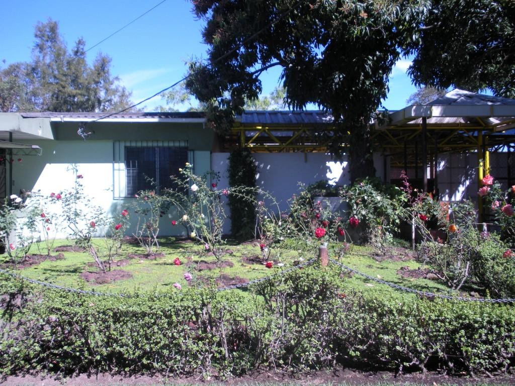 courtyardrose-garden-at-the-uca