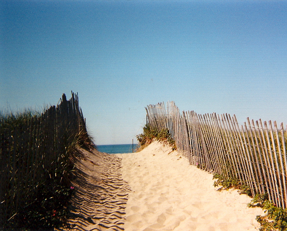 marthas-vineyard-beach