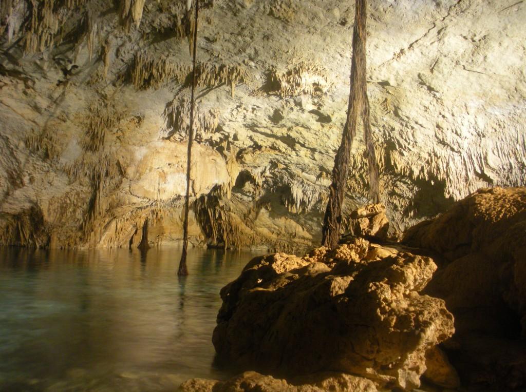 Cenote Snorkeling