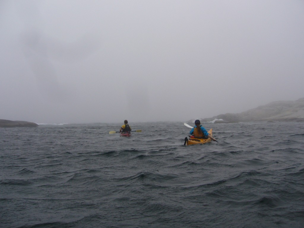 sea kayaking halifax