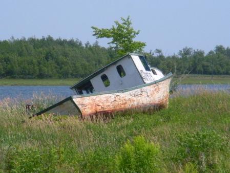 wallace bay