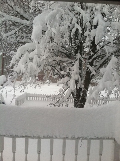 Blizzard porch
