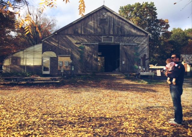 natick organic farm